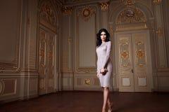 Красивая сексуальная женщина в собрании осени элегантного платья модном состава волос брюнет весны длинного загорела тонкую диагр Стоковое фото RF