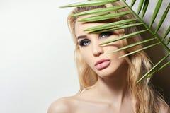 Красивая сексуальная женщина за ладонью стоковая фотография rf