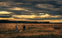 Красивая сельская сцена после дождя стоковое фото rf