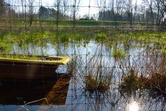 Красивая сельская Фландрия, затопленный луг стоковое изображение rf