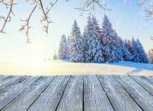 Красивая снежная панорама ландшафта с пустыми старыми деревянными планками Стоковые Изображения RF