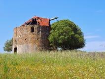 Красивая старая ветрянка на луге с деревом в Португалии стоковые фото
