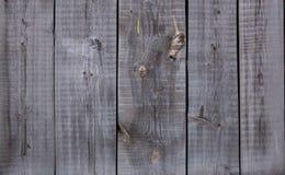Красивая старая предпосылка текстуры загородки деревянных доск Стоковая Фотография RF