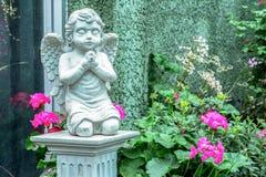 Красивая статуя ангела моля в парке Стоковые Фото