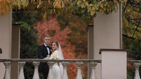 Красивая стойка пар свадьбы на балконе осени te, предпосылке леса акции видеоматериалы