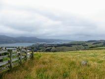 Красивая сторона страны полуострова Otago, вне Данидина, Новая Зеландия стоковые фотографии rf