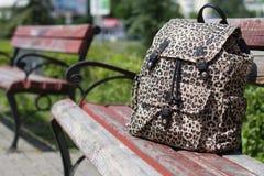 Красивая сумка на скамейке в парке Стоковое Изображение RF