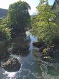 Красивая сцена водопада реки Стоковые Изображения