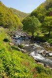 Красивая сцена Девона с рекой около Lynmouth Девона Стоковые Фотографии RF