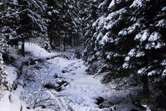 Красивая сцена зимы в доломитах в Val di Fiemme, Trento Стоковые Изображения RF