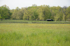 Красивая сцена поля Стоковое Фото