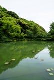 Красивая сцена сочного зеленого японского ландшафта сада с тенями горы зеленого растения, пруда лотоса, etc Стоковое Фото