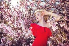 Красивая счастливая женщина в цветении против детенышей весны цветка принципиальной схемы предпосылки белых желтых Стоковые Изображения RF