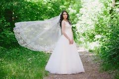 Красивая счастливая молодая невеста брюнет outdoors в платье свадьбы, стиле причёсок, составе, свадьбе, образе жизни Стоковое Фото
