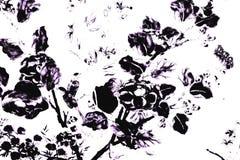 Красивая текстура конспекта черно-белая листья и птицы дерева на белой изолированных стеной предпосылке и обоях картины бесплатная иллюстрация