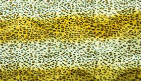 Красивая текстура меха тигра Стоковая Фотография