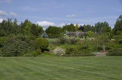 Красивая лужайка в саде стоковые изображения rf