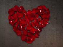 Красивая форма сердца с лепестками розы стоковые изображения
