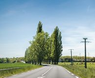 Красивая французская сельская дорога в перспективе с высокорослыми тополями стоковые фотографии rf