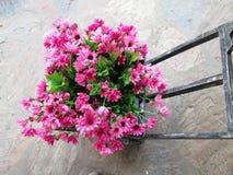Красивая хризантема искусственных цветков Стоковое Изображение