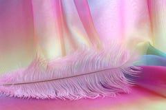 Красивая чувствительная розовая предпосылка пера Стоковое фото RF