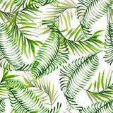 Красивая яркая картина акварели с тропическими листьями Стоковые Изображения RF