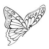 Красивая monochrome бабочка Стоковое Изображение