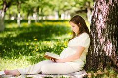 красивейшая беременная женщина парка Стоковое Изображение RF