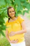 красивейшая беременная женщина парка Стоковые Изображения RF