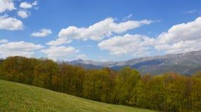 красивейшая весна ландшафта Стоковое Изображение RF
