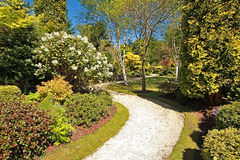 красивейшая весна сада Стоковые Изображения