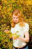 красивейшая весна Стоковое Изображение