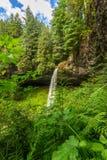 красивейшая вода падения Стоковая Фотография RF
