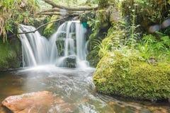 красивейшая вода Стоковое Фото
