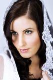 красивейшая вуаль невесты Стоковое фото RF