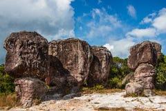 красивейшая гора ландшафта Стоковая Фотография RF