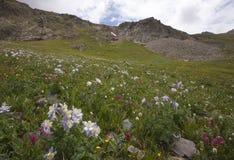 красивейшая гора ландшафта изображения colorado Стоковые Фотографии RF
