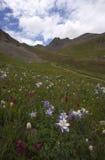 красивейшая гора ландшафта изображения colorado Стоковая Фотография RF