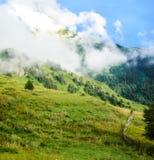 красивейшая гора ландшафта стоковые изображения