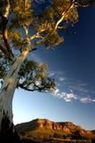 красивейшая гора ландшафта Стоковое Фото