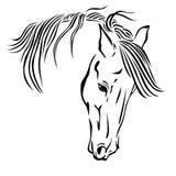 Красивейшая головка лошади иллюстрация вектора