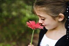красивейшая девушка брюнет Стоковое Изображение RF
