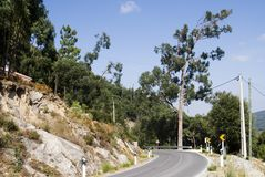 красивейшая дорога горы Стоковые Фотографии RF