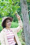 Красивейшая женщина в саде. Стоковое Изображение RF
