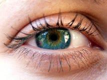 красивейшая женщина глаза Стоковые Изображения