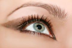 красивейшая женщина глаза s Стоковая Фотография RF