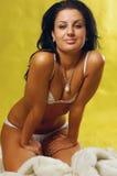 красивейшая женщина нижнего белья Стоковое Изображение