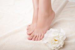 красивейшая женщина ног внимательности Стоковое Изображение