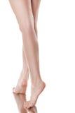 красивейшая женщина ног Стоковые Фотографии RF