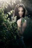 красивейшая женщина пейзажа природы Стоковые Изображения RF